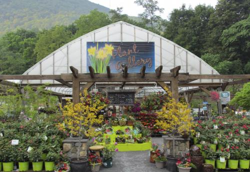 Greenhouse and nursery products from Tussey Mountain Mulch
